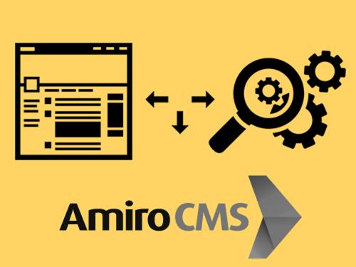 Базовая SEO-оптимизация AMIRO.CMS: правильный robots txt, title, метатеги