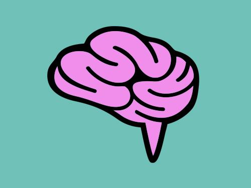 У меня Ранг Мозга: RankBrain — новый алгоритм ранжирования Google