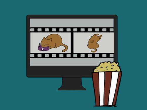 Как добавить трейлер канала на YouTube: все о создании и загрузке ролика