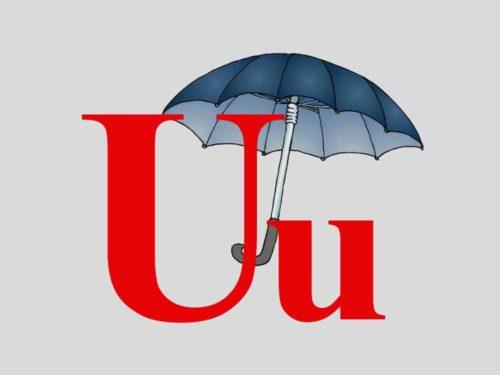 UX- и UI-дизайнеры: различия и советы, как стать профессионалом