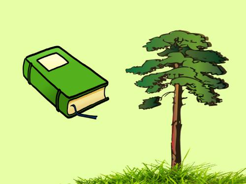 Вечнозеленый контент, который будет вам приносить трафик (перевод)