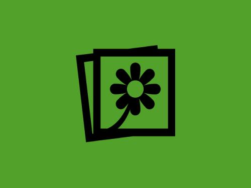 Полное руководство по иллюстрированию контента: от выбора картинок до оптимизации (и 40+ сервисов)